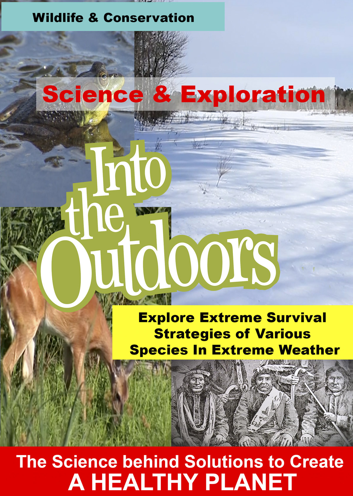 K4970 - Explore Extreme Survival Strategies of Various Species In Extreme Weather