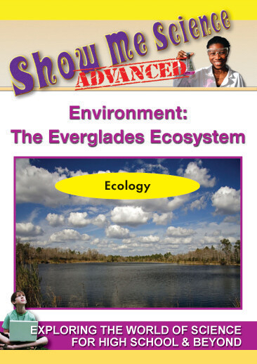 K4663 - Environment The Everglades Ecosystem