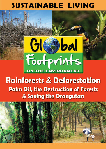 K4702 - Rainforests & Deforestation, Palm Oil  & Saving the Orangutan